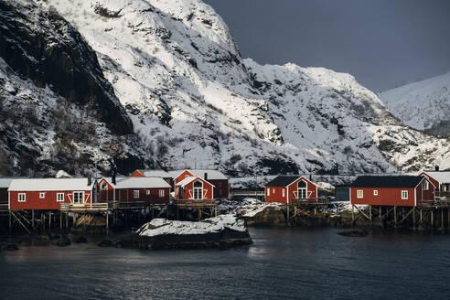 Fishing huts at the coast, Lofoten, Norway - MPPF00718