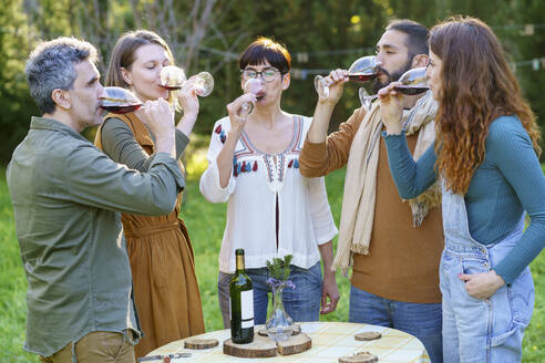 Group of friends drinking red wine on their getaway in the countryside - VSMF00155