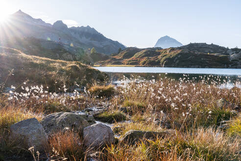 Switzerland, Canton of Grisons, Meadow in front of Crap Alv Lajets lake at autumn sunset - HBIF00100
