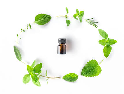 High Angle View Of Bottle With Herbs Arranged On White Background - EYF03842