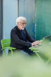 Bearded senior man sitting at garden table using laptop - JOSEF00270
