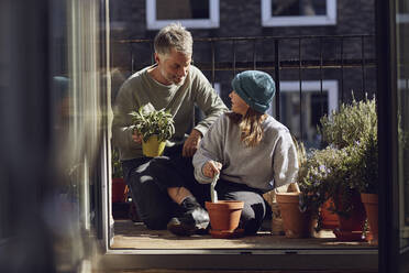 Father and daughter planting together on balcony - MCF00724