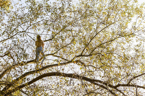 Low angle view of girl standing on tree against sky - OJF00385