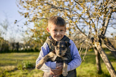 Portrait of boy holding dog on a meadow - ZEDF03321