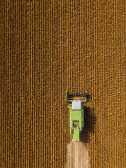 Aerial view of combine harvester on a field of soybean - NOF00079