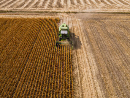 Aerial view of combine harvester on a field of soybean - NOF00082