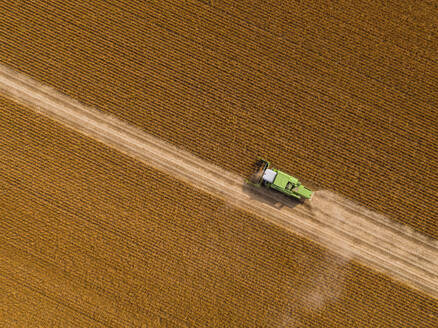 Aerial view of combine harvester on a field of soybean - NOF00085