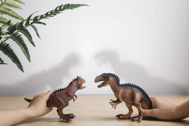 Playing with dinosaurs - JRFF04413