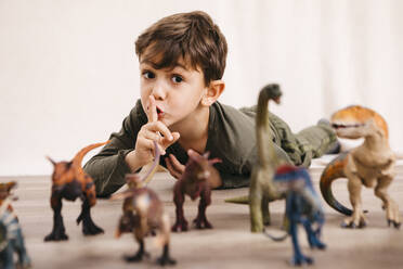 Portrait of little boy playing with toy dinosaurs - JRFF04416