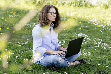 Woman sitting on a meadow using laptop - FLLF00455