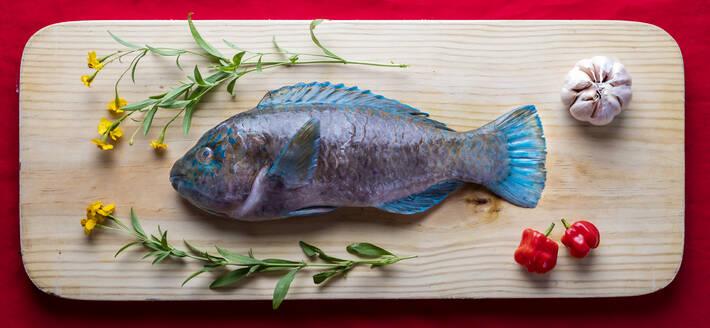 Tray with raw parrotfish - AMUF00104