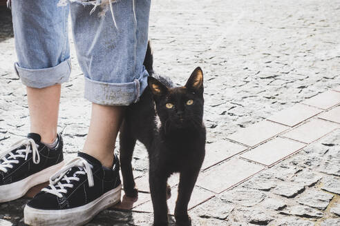 Portrait of stray cat by woman standing on footpath, Corvo, Azores, Portugal - FVSF00240