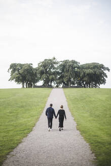Rear view of friends holding hands walking amidst grassy field against trees and sky - MASF18377