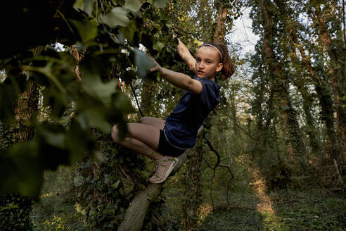 Full length side view of girl climbing on tree in forest - AUF00373