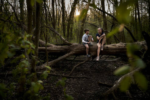 Full length of smiling siblings talking while sitting on fallen tree in forest - AUF00391