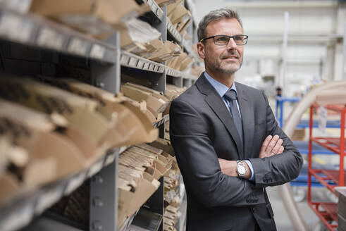 Portrait of a confident mature businessman at a shelf in a factory - DIGF10539