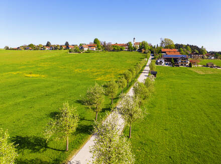 Germany, Bavaria, Eurasburg, Drone view of Birnbaum-Allee and countryside village in spring - SIEF09827