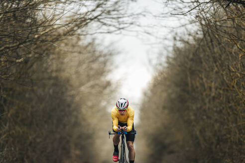 Young man riding racing bicycle amidst bare trees - MTBF00401