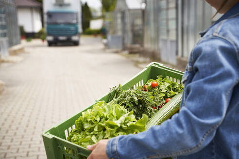Girl carrying crate with fresh vegetables in plant nursery with van in background - AUF00470