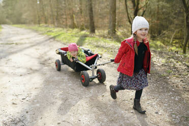 Portrait of little girl pulling trolley with her younger sister on forest track - BRF01449