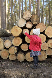 Back view of little girl standing in front of stack of wood in the forest - BRF01464