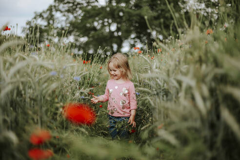 Happy little girl standing in poppy  field - VBF00061