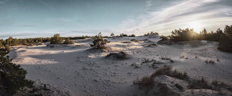 Poland, Pomerania, Leba, Sand dune at Slowinski National Park at sunset - HAMF00611
