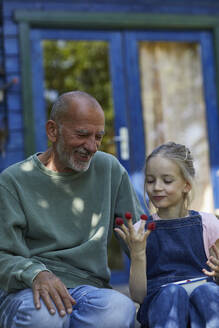 Grandfather and granddaughter with raspberries on her fingertips in garden - MCF00852