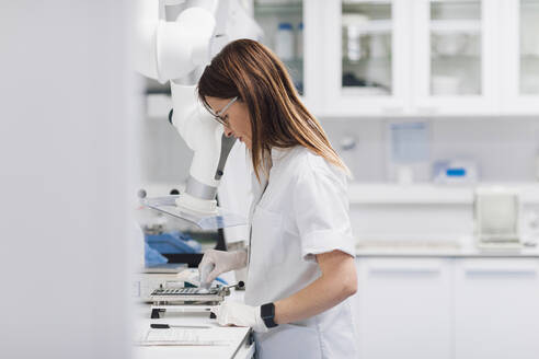 Female pharmaceutical technician sorting medicine tablets at laboratory - OCAF00487