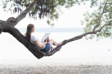Woman sitting on tree trunk reading magazine at Ammersee, Germany - DIGF12407