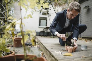 Businessman taking a break, gardening in backyard, repotting cactuses - GUSF03849