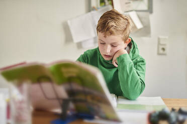 Boy studying at home - MMIF00266