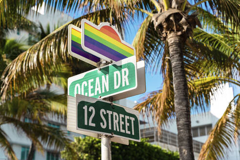 Road signs with rainbow flags against palm trees at ocean drive - GEMF03791