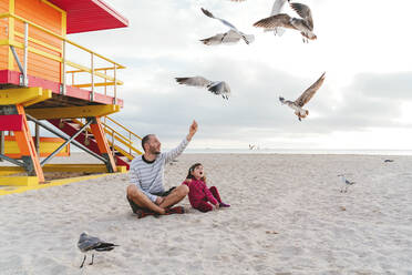 Father sitting with daughter feeding seagulls at Miami beach against sky, Florida, USA - GEMF03794