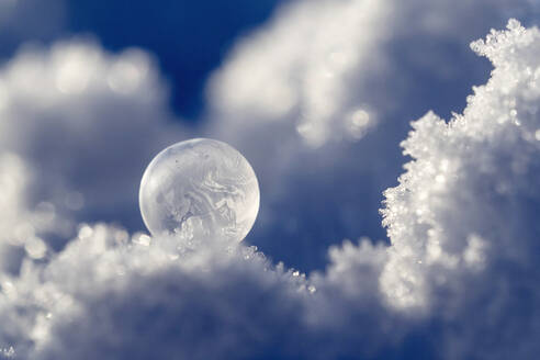 Frosted bubble in winter - BSTF00172