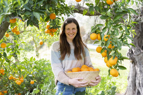 Smiling mid adult woman carrying oranges in wicker basket at organic farm - LVVF00034