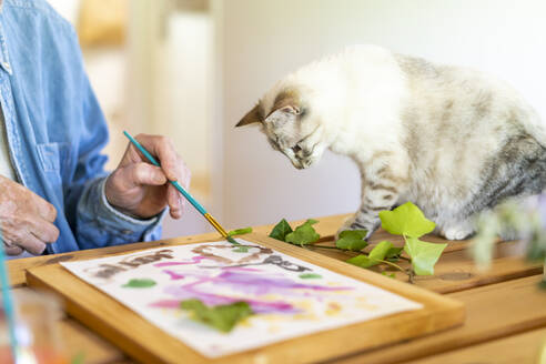 Cat looking at senior man painting on paper at home - AFVF06498