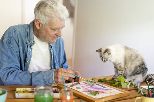 Senior man painting on paper while cat sitting on table at home - AFVF06501