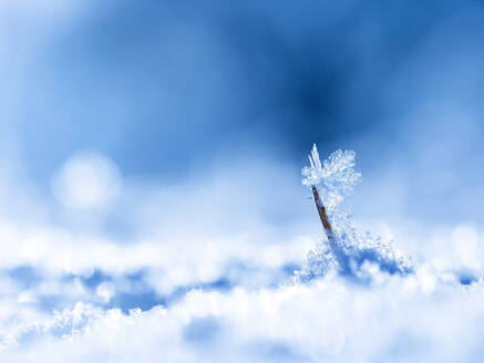 Small ice crystals - BSTF00180