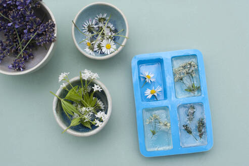 Preparation on various wildflowers andglycerine material for homemade bars of soap - GISF00598