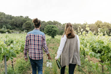 Spain, Barcelona, Penedes. Young couple of farmers strolling and enjoying their vineyards in the afternoon - JRFF04481