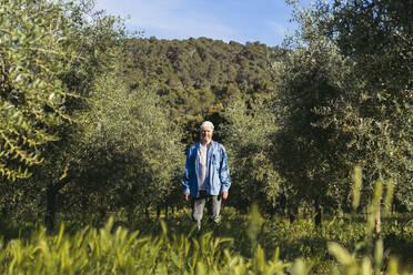 Senior man standing between row of trees on meadow - AFVF06603