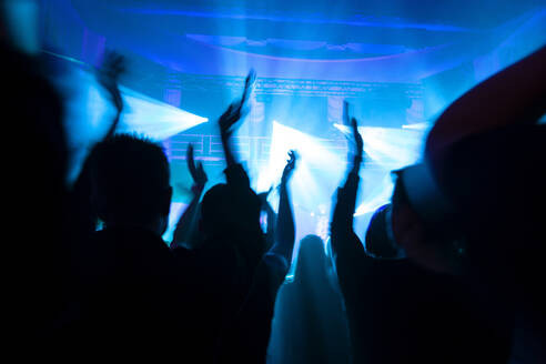 Crowd cheering during electronic music festival - NDF01069