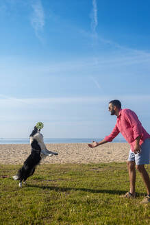 Bearded man playing with dog at beach in sunny day - CAVF84995