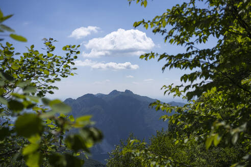 Scenic view of European Alps against sky during sunny day seen through forest, Lecco, Italy - MCVF00435