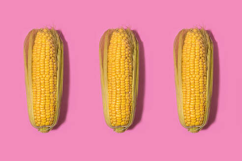Studio shot of three corns against pink background - FLMF00249