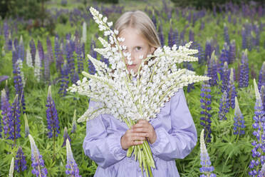 Portrait of girl standing in front of flower field holding bunch of white lupines - EYAF01173