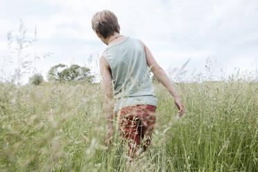 Back view of boy walking on an oat field - EYAF01176