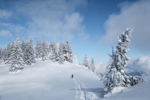 Senior man during ski tour, Inzell, Kienberg, Germany - HAMF00648