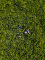 Aerial view of young couple at the green lawn, Tikhvin, Russia - KNTF04731